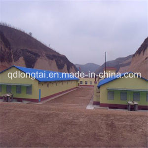 Poultry Steel Structure Building for Feeding Factory pictures & photos