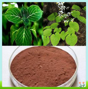 Pure Yohimbe Extract Yohimbe Bark Extract Pharmaceutical Grade Yohimbe HCl 98% pictures & photos
