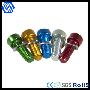 Color-Zinc Plated Aluminum Bolt pictures & photos