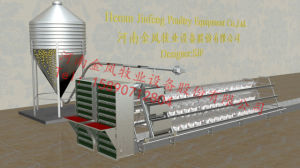 Cage-a Laying Hens Chicken Poultry Cages for Use Type and Type pictures & photos