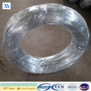 Low Carbon Galvanized Steel Wire Tie Wire (XA-GIW19) pictures & photos