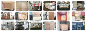Foam and Sponge Foaming Machine (FP) pictures & photos