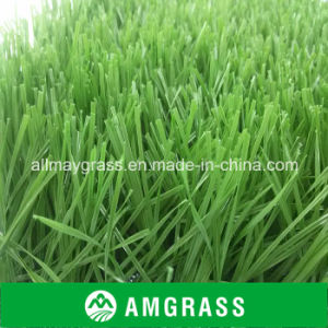 Soccer Used Futsal Artificial Grass pictures & photos