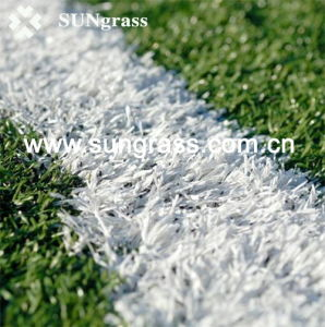 25mm Colorful School Runway Synthetic Grass (QDS-RBW) pictures & photos