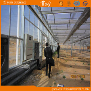 Hot Sale Multi-Span Greenhouse with Glass Covered pictures & photos