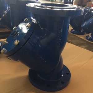 Wcb Flanged Y-Strainer Pn10 pictures & photos