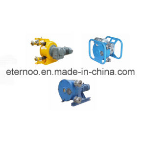 Chemical Industry Usage Peristaltic Pump pictures & photos