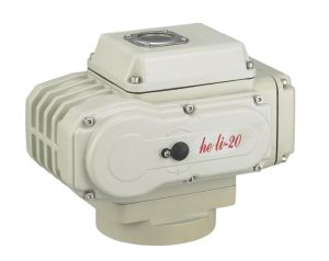 High Quality Electric Actuator Hl-20 pictures & photos
