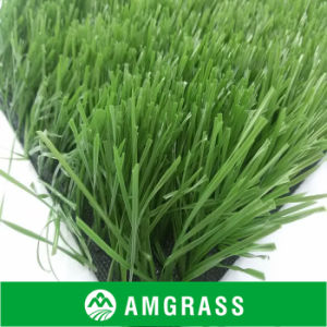 Soccer Football Artificial Grass (ASS-50D) pictures & photos