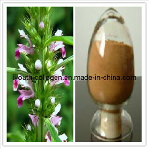 Motherwort Extract, Pure Chinese Herbal Medicine, Herbal Medicine, Nontoxicity pictures & photos