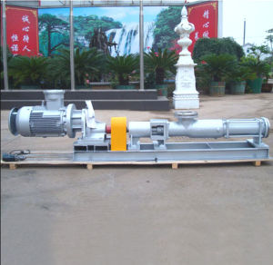 Hot Sell with Motor G Singe Screw Pump pictures & photos