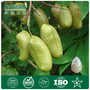Griffonia Simplicifolia Seed Extract (98% 5-Hydroxy-Tryninphan)