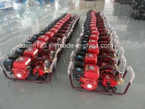 Garden Power Sprayer with Gasoline Engine (OS-S22-K) pictures & photos