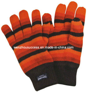 Knitted Gloves Sh12-2g017 pictures & photos