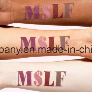 Makeup Velveins Collection Limited Edition 4PCS/Set Matte Lipstick pictures & photos