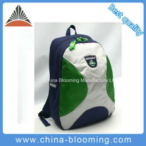 Customized Travel Leisure Sports Bag Laptop Computer Notebook Backpack pictures & photos