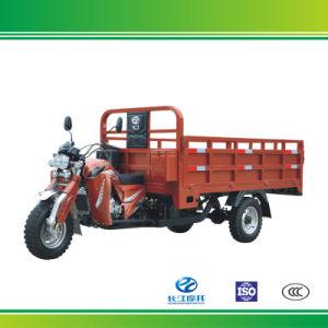 Water Cooling 3 Wheel Cargo Motor Vehicle Made in China