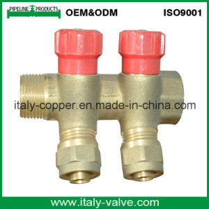OEM&ODM Quality Brass Forged 2-Way Manifold (AV9070) pictures & photos