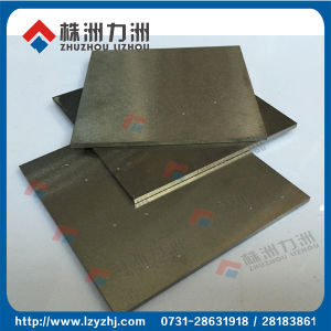 Good Wear Resistance Hip and CIP Carbide Block Plate