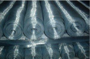 Galvanized Iron Wire Insert Screen pictures & photos