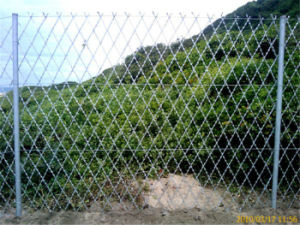 Razor Wire Mesh Fence pictures & photos