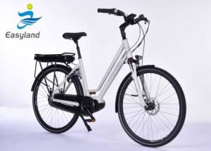 Super Electric Bicycle EL-dB7008L