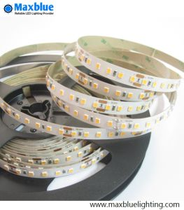 5m 2835SMD White/Warm White LED Strip Light pictures & photos