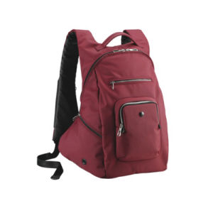 Fashion Laptop Bag Outdoor Travel Hiking Backpack pictures & photos