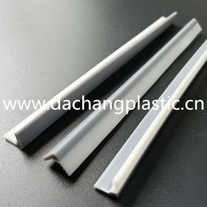 PP&TPE Plastic Coextrusion Gasket pictures & photos