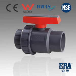Era Brand Plastic Valves (DIN&JIS&ANSI&BS STANDARD) pictures & photos