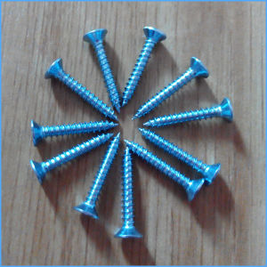 Hot Sale Galvanized Countersunk Head Self Tapping Screw pictures & photos