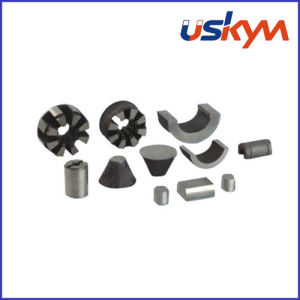 Custom Shapes AlNiCo Magnets (S-003) pictures & photos