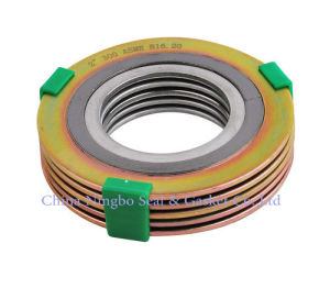 Znic Plated Spiral Wound Gasket pictures & photos