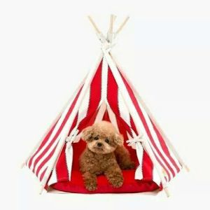 Wooden Indian Tent for Pet House