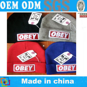 Obey Beanies (D31) pictures & photos
