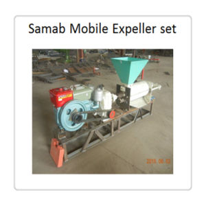 Easy Operation Palm Oil Expeller at Low Price