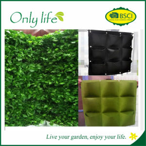 Onlylife BSCI Audit Felt Light Weight Vertical Green Wall pictures & photos