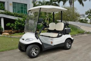 Chinese Manufacture 2 Seats Electric Golf Car pictures & photos
