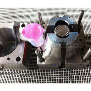Injection Mold for PP Kettle pictures & photos