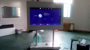 65inch Outdoor Landscape LCD Kiosk pictures & photos