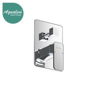 Aqualem Brass Concealed Faucet with Diverter