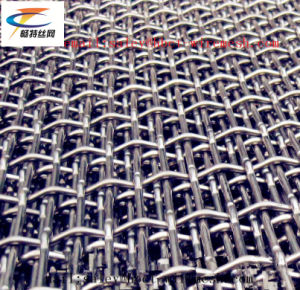 High Quality Stainless Crimped Wire Mesh pictures & photos