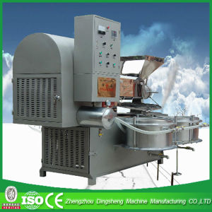 Newest Small Olive Oil Mill Factory Price pictures & photos