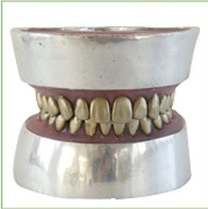 TM-E11 Metal Teeth Extraction Model pictures & photos