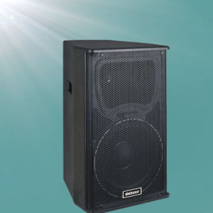 600W Dance Hall Professional Speaker pictures & photos