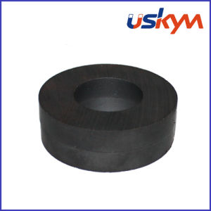 China Ferrite Ring Magnets (R-001) pictures & photos