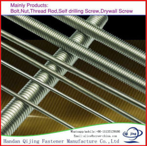 Threaded Rod Stainless Steel 202, SS304 SS316 DIN975 pictures & photos