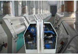 60-80t/D Flour Mill Plant (JY4562)
