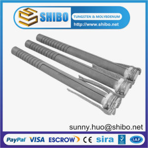 Double Spiral Type Sic Heating Element, SCR Sic Heater pictures & photos