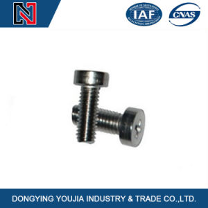 Carbon Steel Cross Recessed Cheese Head Screw pictures & photos